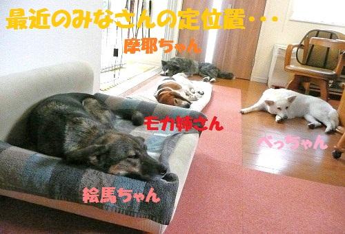 f0121712_15554870.jpg