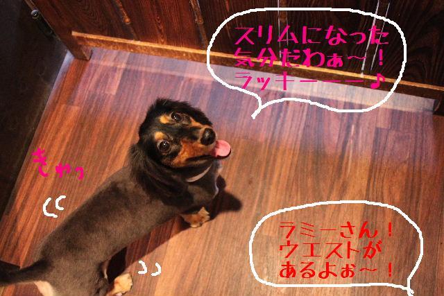 こんばんわぁ~~!!_b0130018_21141723.jpg