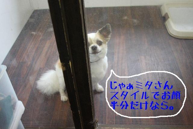 こんばんわぁ~~!!_b0130018_21291018.jpg