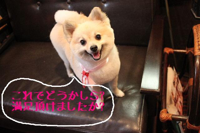 こんばんわぁ~~!!_b0130018_21312546.jpg
