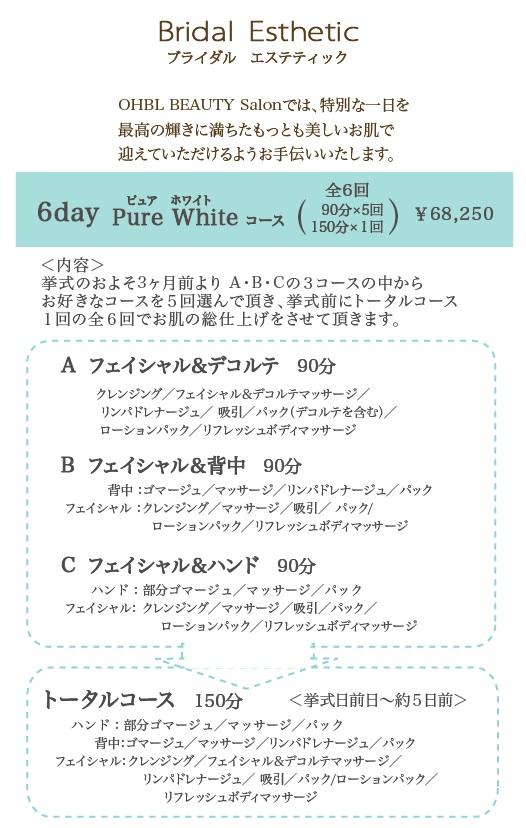 京都OHBL ブライダルエステティック_f0046418_1042753.jpg