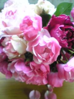 凄くいい香り_f0199641_17185198.jpg