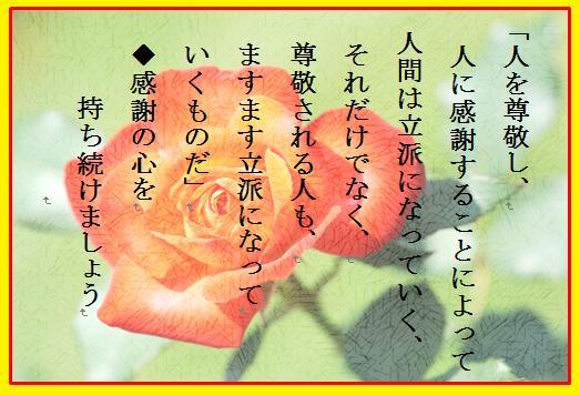 b0115959_1592567.jpg