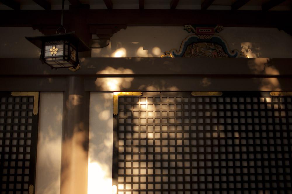 yushima_b0252796_14544539.jpg