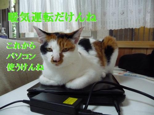 e0072606_14454456.jpg