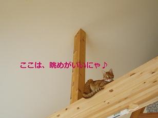 b0200310_2233918.jpg