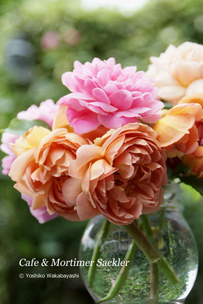 Rose 2012_d0107929_114122100.jpg