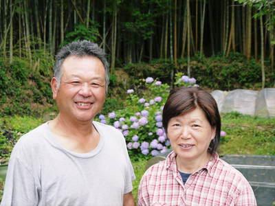 熊本産高級マスクメロン『肥後グリーン』令和元年は7月30日(火)が最終出荷!残りわずかお急ぎください!!_a0254656_1648444.jpg