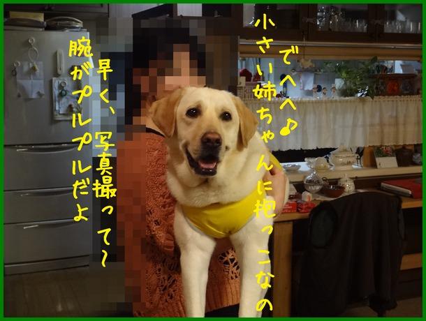 d0250709_1155694.jpg
