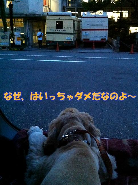 b0067012_14414066.jpg