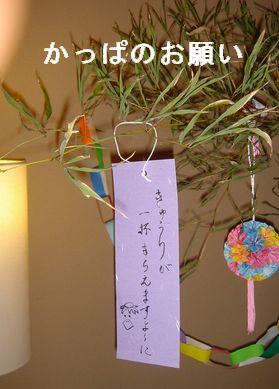 なんちゃって女将の七夕飾り_e0234016_19545457.jpg