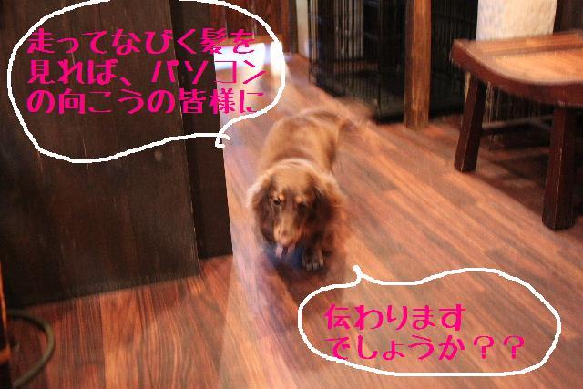 おはよぉ~ございまぁ~!!_b0130018_752247.jpg