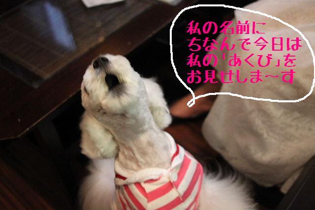 おはよぉ~ございまぁ~!!_b0130018_7575841.jpg