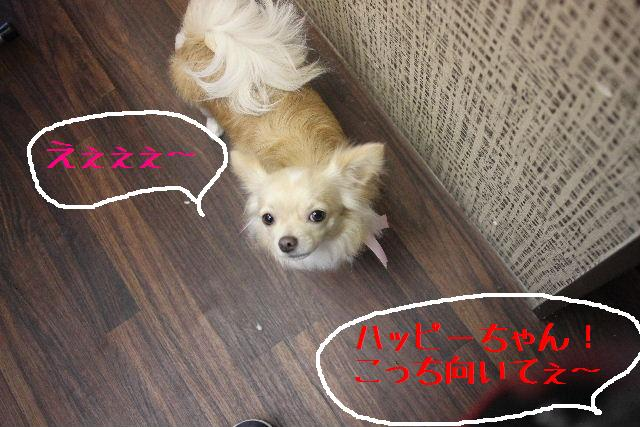 おはよぉ~ございまぁ~!!_b0130018_7593626.jpg