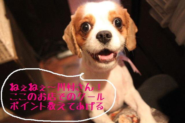 おはよぉ~ございまぁ~!!_b0130018_81341.jpg