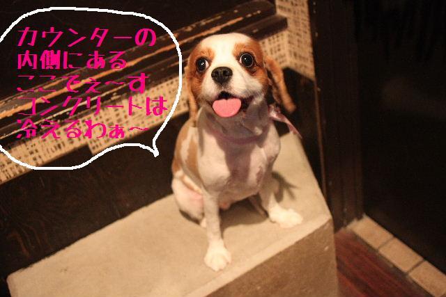 おはよぉ~ございまぁ~!!_b0130018_81853.jpg