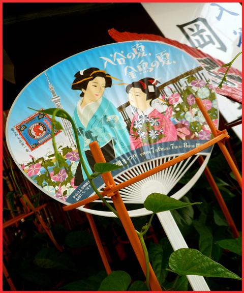 入谷・「朝顔市」へ。入谷の夏、日本の夏。_e0236072_2252249.jpg