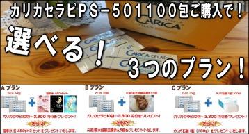 d0252582_23501421.jpg