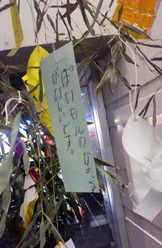 星に願いを☆_d0167088_22152940.jpg
