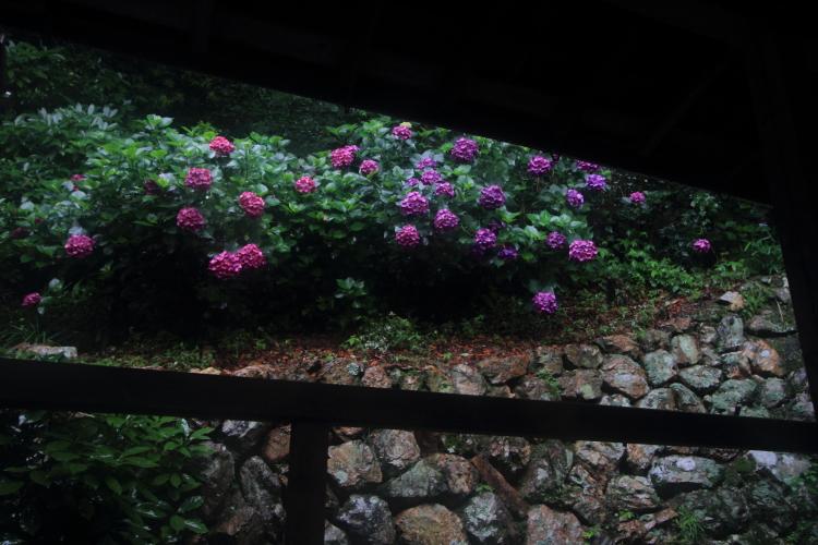 楊谷寺(柳谷観音)_e0051888_01117.jpg