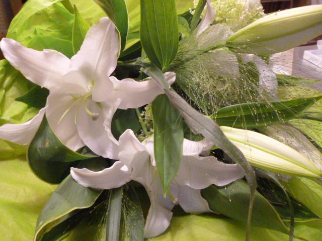 7月の誕生花は・・・_b0210699_105235.jpg