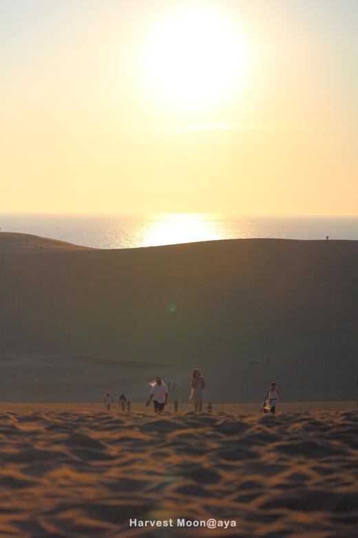 夏の始まり~砂丘より_b0208495_23454265.jpg