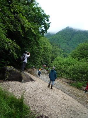 千年の森自然学校_d0008402_19151047.jpg