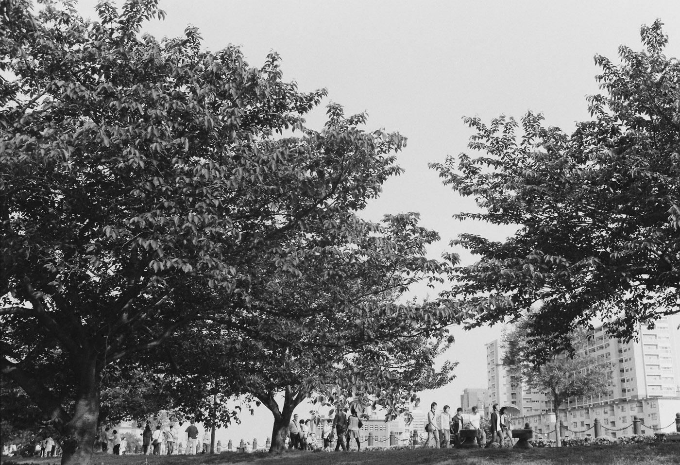 東京観光写真倶楽部、撮影会「福生」、募集中。_c0120903_23164726.jpg