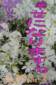 d0095910_16172962.jpg