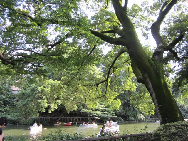 井の頭公園/Le park d`Inokashira_d0070113_0191726.jpg