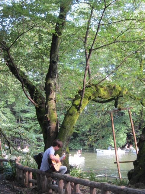 井の頭公園/Le park d`Inokashira_d0070113_0203427.jpg