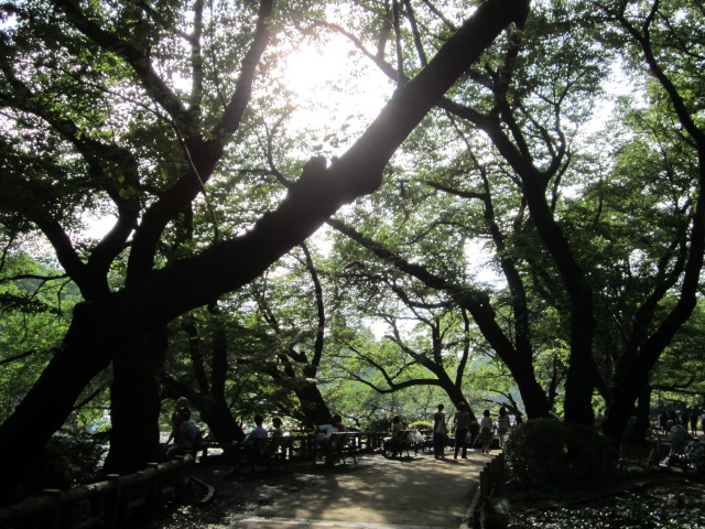 井の頭公園/Le park d`Inokashira_d0070113_0251816.jpg