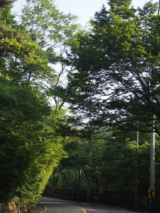 2012 7月 ソウル 7 5日目日記  126マンション 朝食 洋食編 と 不完全燃焼だった今回の旅 ・・・_f0062122_1352397.jpg