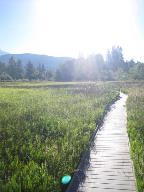 毎朝日課のお散歩をどうぞご一緒に・・・_e0131324_23172282.jpg