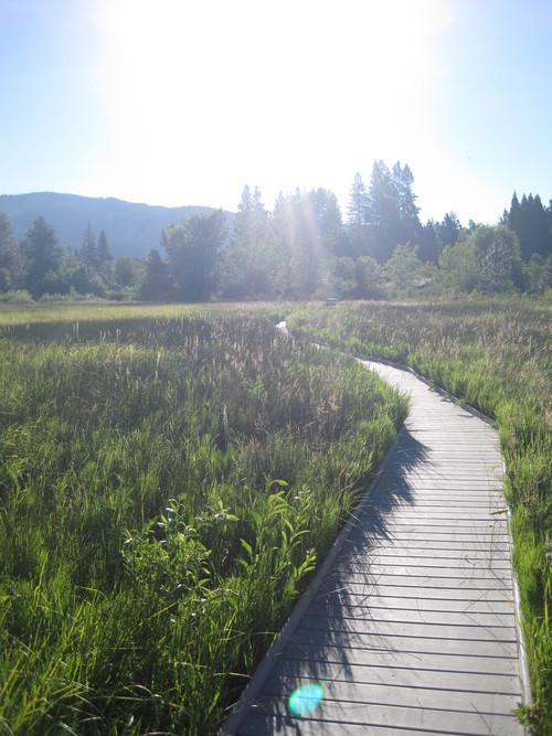 毎朝日課のお散歩をどうぞご一緒に・・・_e0131324_23175243.jpg