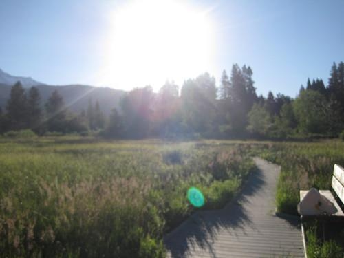 毎朝日課のお散歩をどうぞご一緒に・・・_e0131324_23263592.jpg