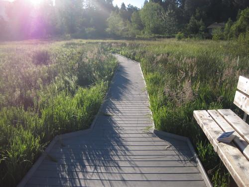 毎朝日課のお散歩をどうぞご一緒に・・・_e0131324_2327220.jpg
