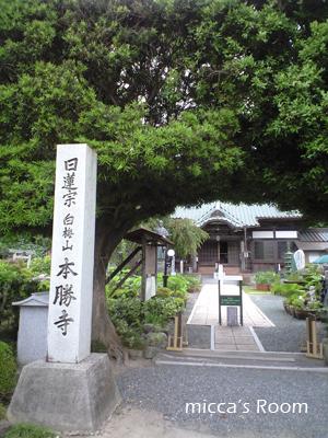 本勝寺の紫陽花_b0245038_13192261.jpg
