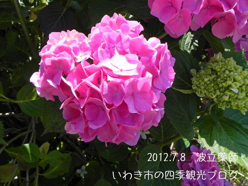 f0105342_15545727.jpg