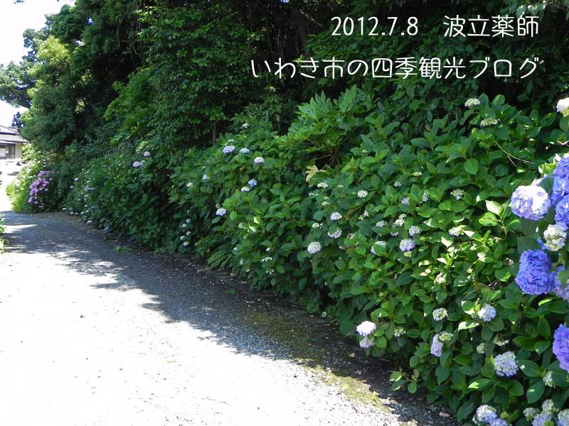 f0105342_15561816.jpg