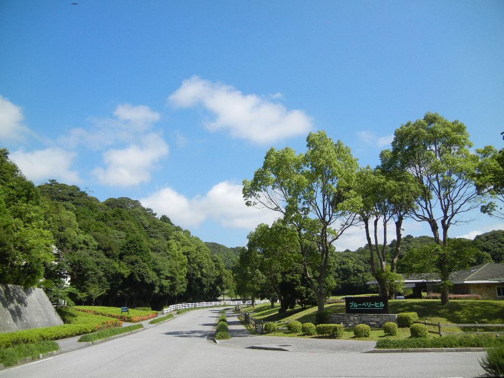 '12,7,9(月)真夏の青い空と水彩画教室!_f0060461_1354821.jpg
