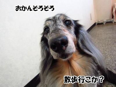 d0020869_15271110.jpg