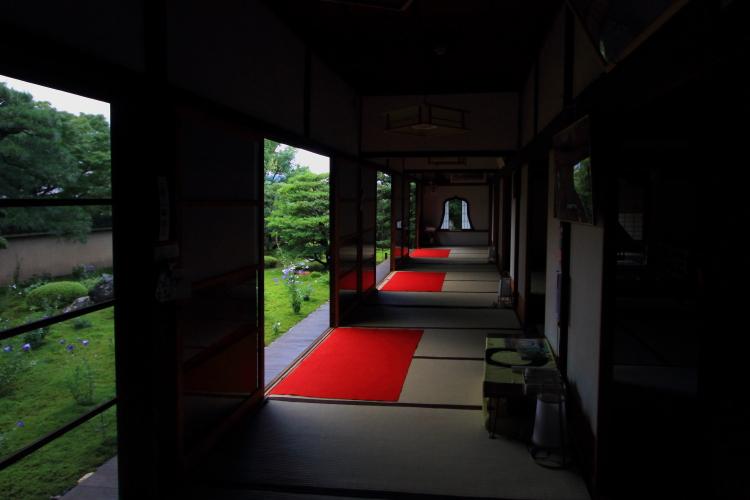 天得院(東福寺塔頭)_e0051888_19585660.jpg