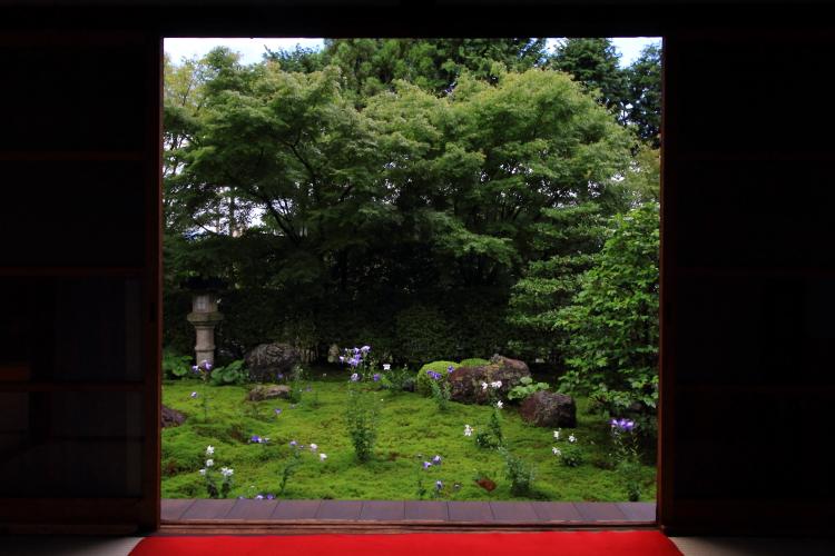 天得院(東福寺塔頭)_e0051888_2004461.jpg