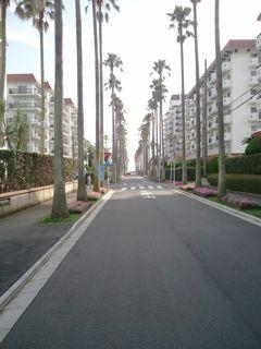 海遊びin鎌倉_c0204289_1783256.jpg