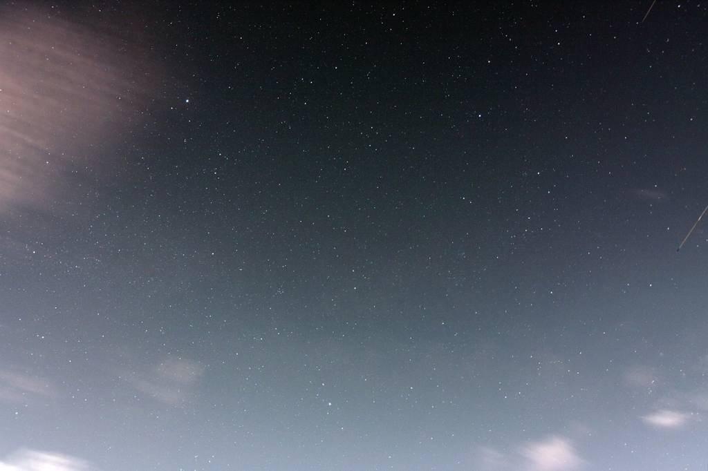 カワセミ雑伎団/一日遅れの七夕の星々_b0024798_10161765.jpg