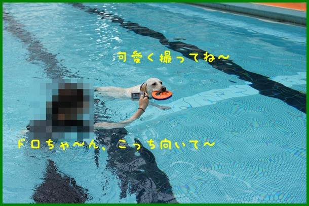 d0250709_1640541.jpg