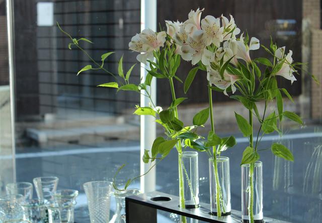 花で涼しく!_c0237627_22522856.jpg