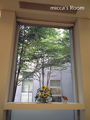 オカン食堂とヴィレッジの梅ジュース_b0245038_1115379.jpg