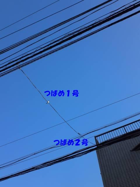 b0222559_21184079.jpg